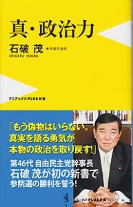 shin_seijiryoku
